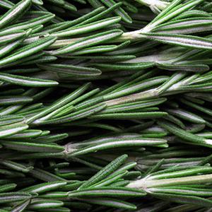Saison Organic Rosemary Skincare