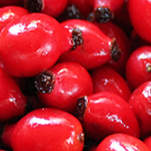 Saison Organic Rosehip Skincare