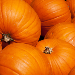 Saison Organic Pumpkin Skincare