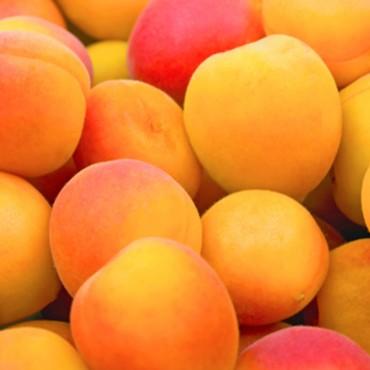 Saison Apricot Skincare