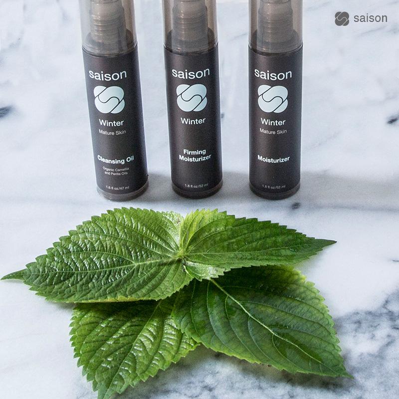 Perilla Seed Oil | Saison Winter Organic Skincare